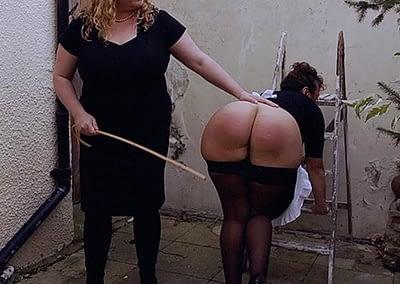 Artemisia canes Johanna the maid